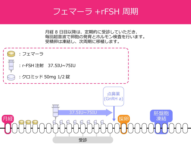 フェマーラ+rFSH周期の採卵スケジュール