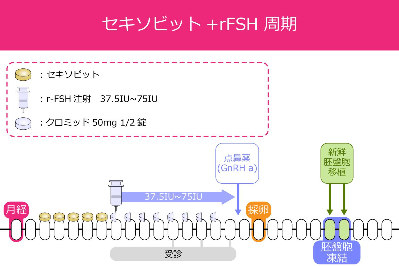 セキソビット+rFSH周期の採卵スケジュール